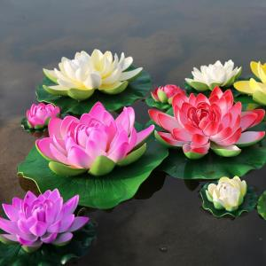 5pcs-mix-colors-and-beautiful-lotus-seeds