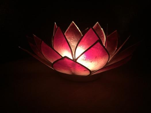 lotus-2936071_1920
